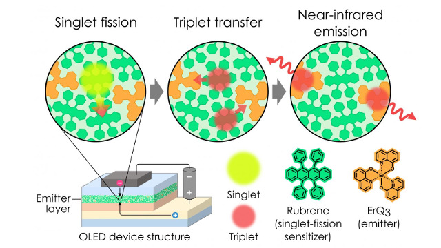 Kyushu University - Illustration of singlet fission process used to boost the number of excitons in an OLED